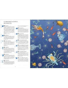 Lazo Azul Annie Gingham